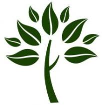 Baum Bayreuth